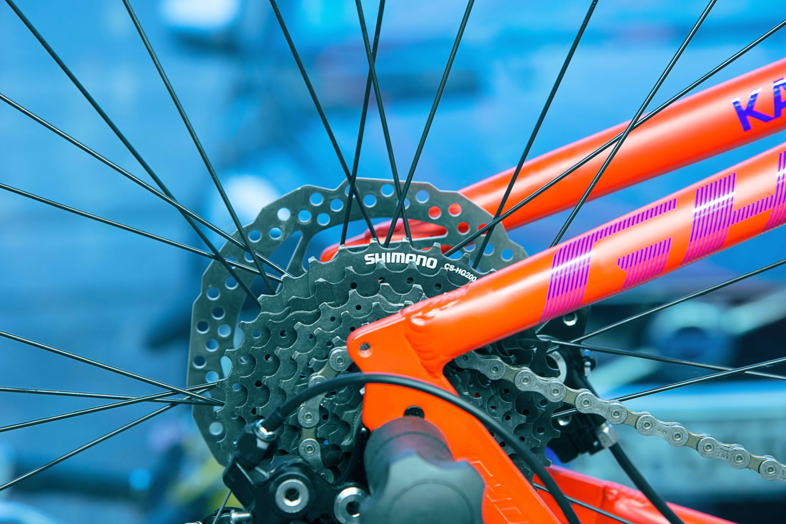 Bikestation Freising _ Zahnkranz Shimano